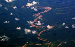 Aerial overhead of Amazon River, Peru Royalty Free Stock Image