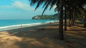 Aerial: Through the palm trees to the beach. Aerial: Through the palm trees to the Kamala beach. Phuket. Thailand stock footage