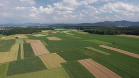 AERIAL: Panorama of fields with various types of agriculture stock footage