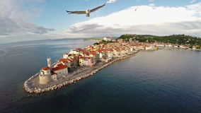 Aerial panoramic view of old city, flight with birds. stock video