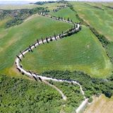 Aerial panoramic view of Tuscany winding road, Italy.  stock photo