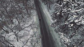 aerial Person geht durch einen schneebedeckten Wald stock footage