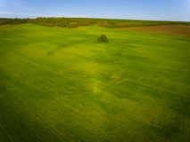 Aerial photo of  agricultural fields. Aerial photo of some agricultural fields Royalty Free Stock Photo