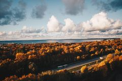 Aerial Photo of Car on the Road Surrounded by Brown Trees Under Alto Cumulus Clouds and Clear Blue Sky Stock Photo