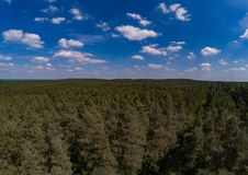 Aerial photo of forest landscape called Tennenloher Forst near the village Tennenlohe Stock Photography