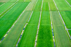 Landscape of the Netherlands Royalty Free Stock Images