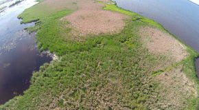 Aerial Photo of Marsh. Low altitude aerial photography of a wetland and vegetation Royalty Free Stock Photos