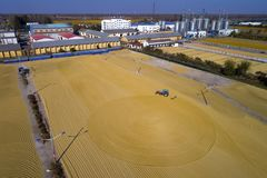 Aerial photo of paddy harvest in rural China. On November 4, 2017, huai `an city, jiangsu province, China, took a photo of the golden rice paddy fields of baima Stock Photos