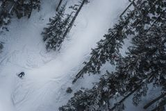 Snowboarder going down between the trees of Whistler. Aerial photo of snowboarder on mountain Royalty Free Stock Photography