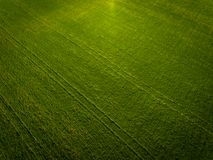 Aerial photo of agricultural fields. Aerial photo of some agricultural fields Royalty Free Stock Images