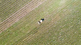 Aerial photo of a tractor in a vineyard stock photos