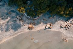 Aerial Photography of Beach Shore With Trees Nearby stock photo
