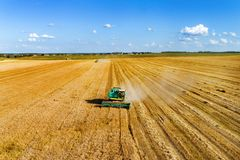 Aerial photography, combine harvester is working on a wheat field. Autumn harvesting of cereals Royalty Free Stock Image