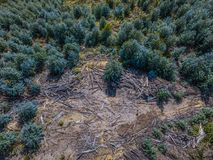 Free Aerial Photography, Deforestation. Aerial Photo Of Environmental Damage Stock Image - 116447101