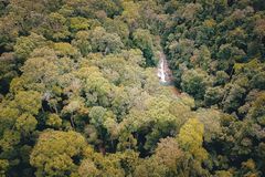 Aerial Photography Of Forest stock photography