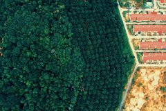 Aerial Photography Of Forest And Houses royalty free stock photo