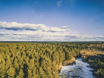 Aerial Photography of a Forest in Winter - Vintage look edit. Aerial Photography of a Bright Forest in Sunny Winter Day with a nice Blue Skies in the Background Stock Image