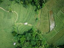 Aerial Photography of Green Field royalty free stock images