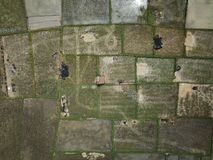 Aerial Photography of Green Grass Field royalty free stock images