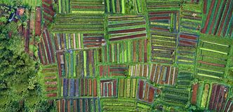 Aerial Photography of Green Grass Field royalty free stock photos
