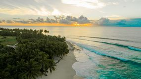Aerial Photography of Green Palm Trees on Seashore at Golden Hour stock photo
