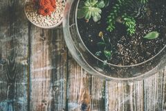 Aerial Photography of Green Potted Plant Stock Images