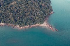 Aerial Photography of Green Trees Near Body of Water royalty free stock photos