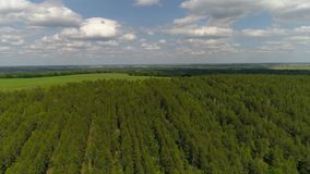 Aerial photography of the nature of the central strip of Russia. Span above mountains and trees. Aerial photography of the nature of the central strip of Russia stock video footage
