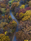 Aerial Photography of Road in Between Forest Trees Royalty Free Stock Images