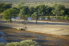 Aerial photos of river and Lewa Conservancy in Kenya, Africa Stock Images