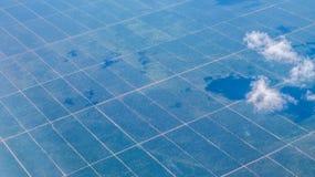 Aerial picture of palm oil plantation in Borneo, Indonesia. stock photo