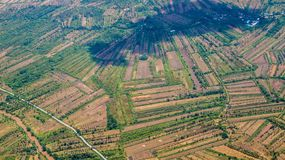 Aerial picture of rice field in Borneo, Indonesia in dry season. stock images