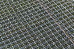 Aerial Plant Filled Greenhouses Royalty Free Stock Photo