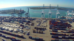 Aerial port of Miami stock video footage