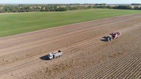 Harvesting potatoes in field stock video footage