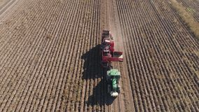 Harvesting potatoes in field. Aerial potatoes harvesting machine with tractor in farm land for harvesting potatoes. Farm machinery harvesting potatoes stock footage