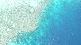 Aerial of reef fringing island in Wakatobi national park. A healthy coral reef fringes an island in Wakatobi National Park in Indonesia. This region harbors stock video footage