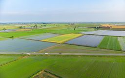 Free Aerial: Rice Paddies, Flooded Cultivated Fields Farmland Rural Italian Countryside, Agriculture Occupation, Sprintime In Piedmont, Stock Images - 118014434