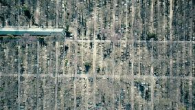 Aerial rising shot of old catholic cemetery on a sunny spring day, top view Royalty Free Stock Image