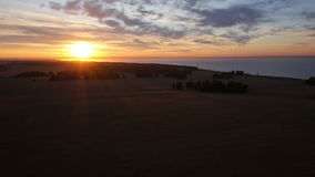 AERIAL: Rising up from wheat field towards the sun stock footage