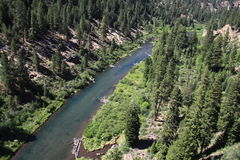 Aerial River Canyon and Forest Stock Photos