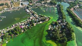 Aerial of river polluted with green algae with houses and boat docks on banks. Aerial of river polluted with green algae with fishermen houses and boat docks on stock video footage