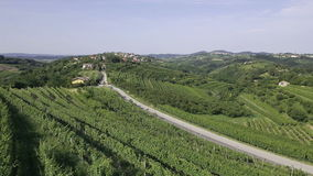 AERIAL: Rows of vineyard on a hill next to the car road in wine country stock video