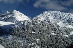 Aerial scene of Whistler Royalty Free Stock Photography