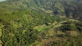 Aerial scenery video of Yogyakarta Mangunan hill stock video