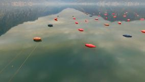 Aerial shoot of plantation for growing shells, mussels and oysters. In the Bay of Kotor stock video