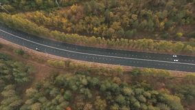 Aerial shoot of trail in colorful autumn forest stock video footage