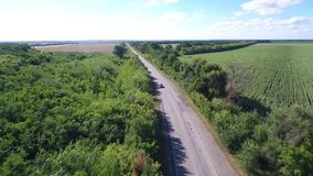 The drone flies over the road among the forest and the fields along which the car rides. Aerial shooting, the car rides along the road among fields and green stock footage