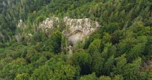 Aerial shot beautiful landscape with forest and cliff stock video