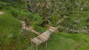 Aerial shot of a beautiful young woman in a blue dress that visits famous Tegalalang Rice Terraces in Ubud village on stock video